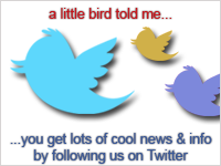 Follow Us on Twitter at twitter.com/dchumanrights